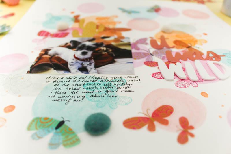 Zinia-AmyTan-February-WatercolorsandButterflies-06.jpg
