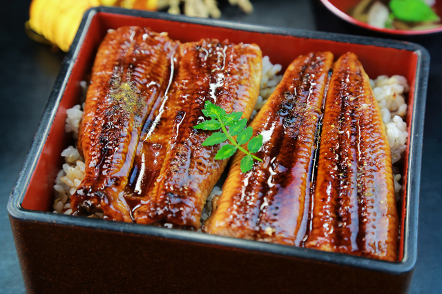 NHK WORLD serves up new English language JAPANESE FOOD website.jpg