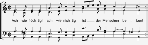 The Elements String Quartet.