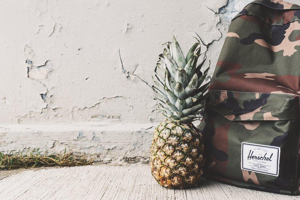pineapple-supply-co-72776-unsplash.jpg
