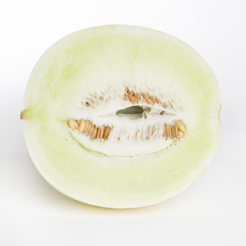 Melon - Honeydew