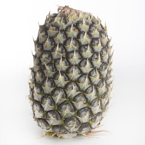 Pineapple - Large