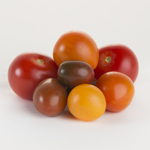 Tomato-Medly Mix