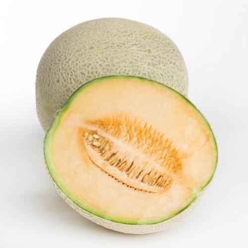 Melon - Rockmelon