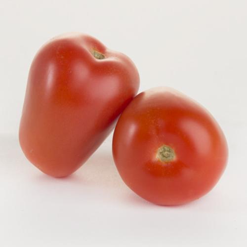 Tomato-Roma