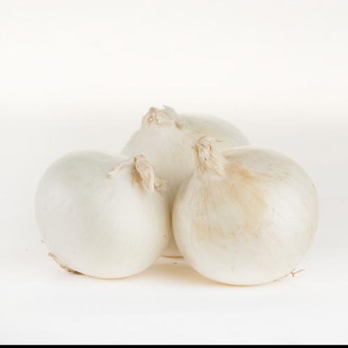 Onions (White)