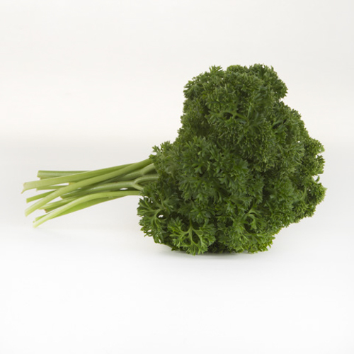 Herb (Parsley)
