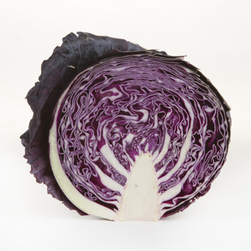 Cabbage (Red)