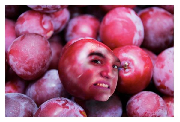 fruit-1.jpg