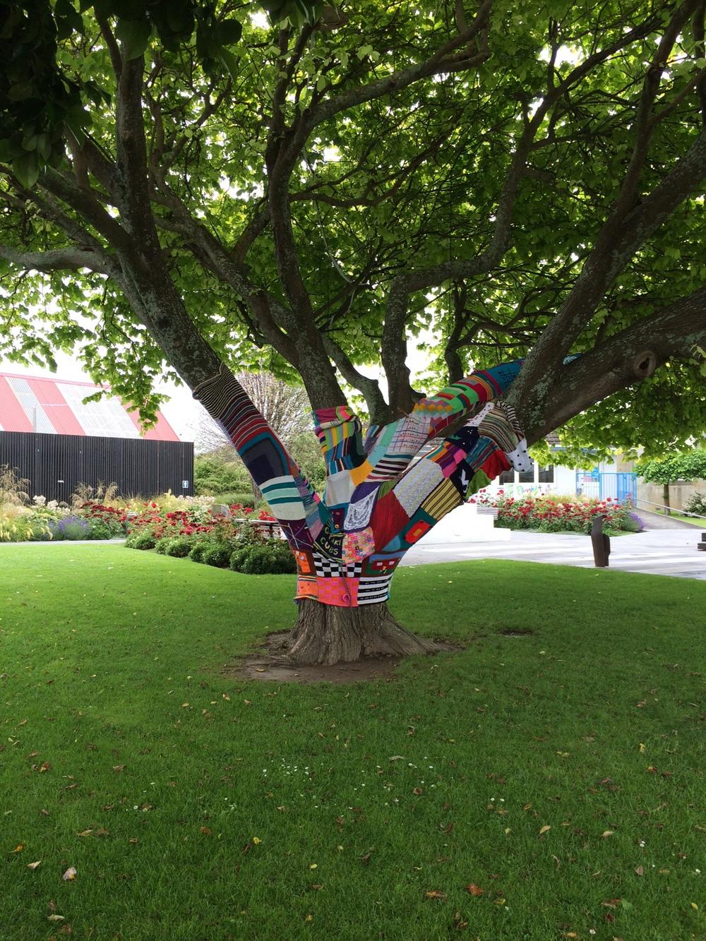 Tree Love in Otaki