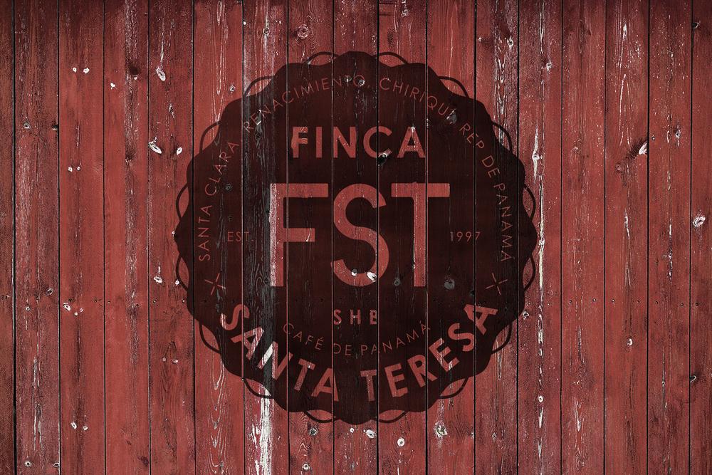 12_fst_wall.jpg