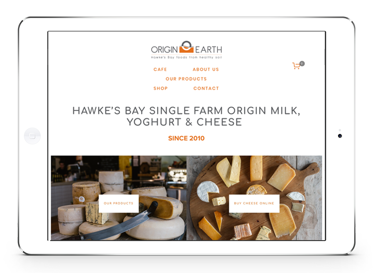 Origin Earth website