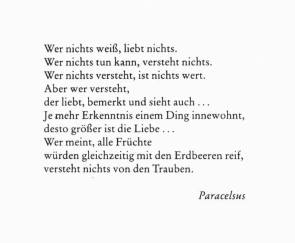 Erich Fromm / Die Kunst des Liebens