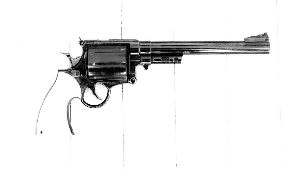 2014-06-25 toy gun-082.jpg