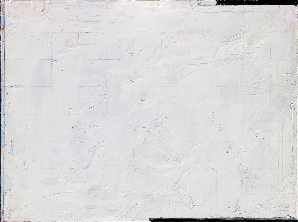 015.White on White 30x40 2013.jpg