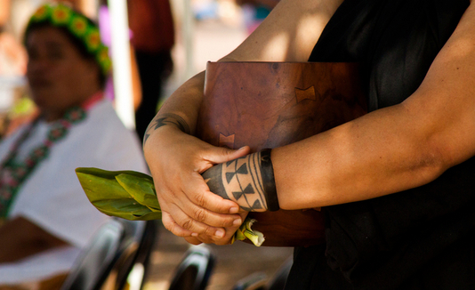 Hoʻoulu ʻĀina