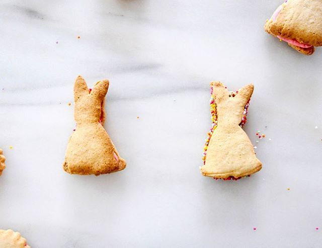 easter is so soon and i have my bunny cookie cutter ready!! 🐰🐰 (recipe in the archives!) #littlealice #littlealiceeaster #feedfeed @thefeedfeed #dairyfree #foodblog