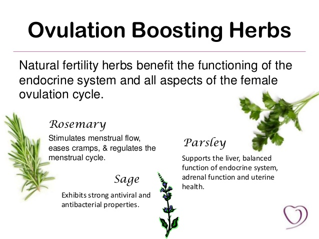 natural-fertility-boosting-foods-6-638.jpg