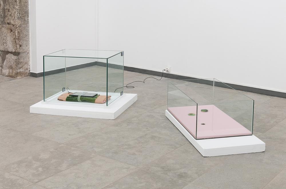 Gioia di Girolamo   Installation view at Matter/Non_Matter MAH Museum