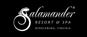 client-logos-salamander.jpg