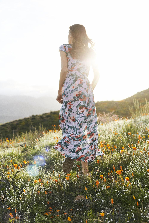 lake elsinore san diego poppy fields flower nicole smith photography lifestyle photographer