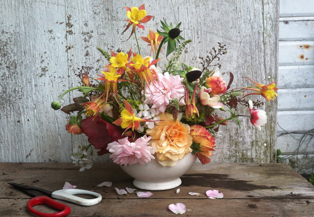 Columbines and roses by Siri Thorson
