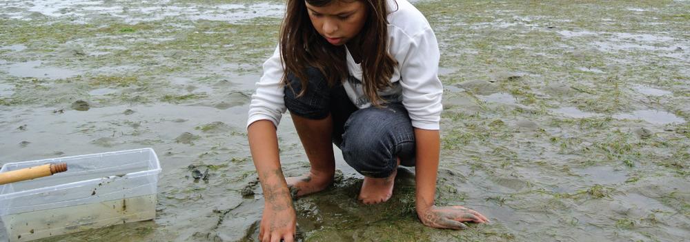 Learning With Communities  Aboriginal STEM Program