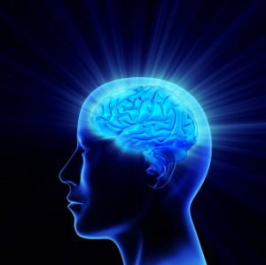 Brain learning.jpg