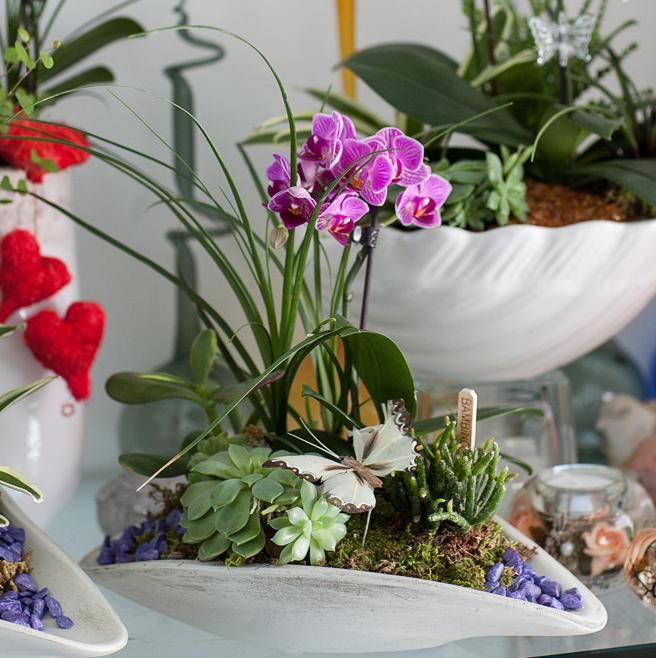 Arrangment mit Orchideen