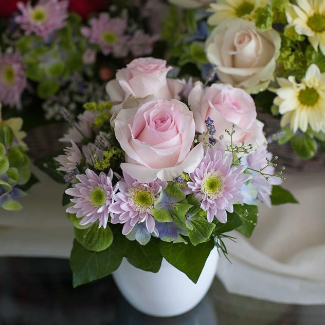 Rosengesteck mit der Rose Nena