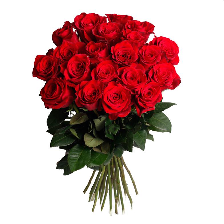 welche farbe schenke ich valse des roses. Black Bedroom Furniture Sets. Home Design Ideas