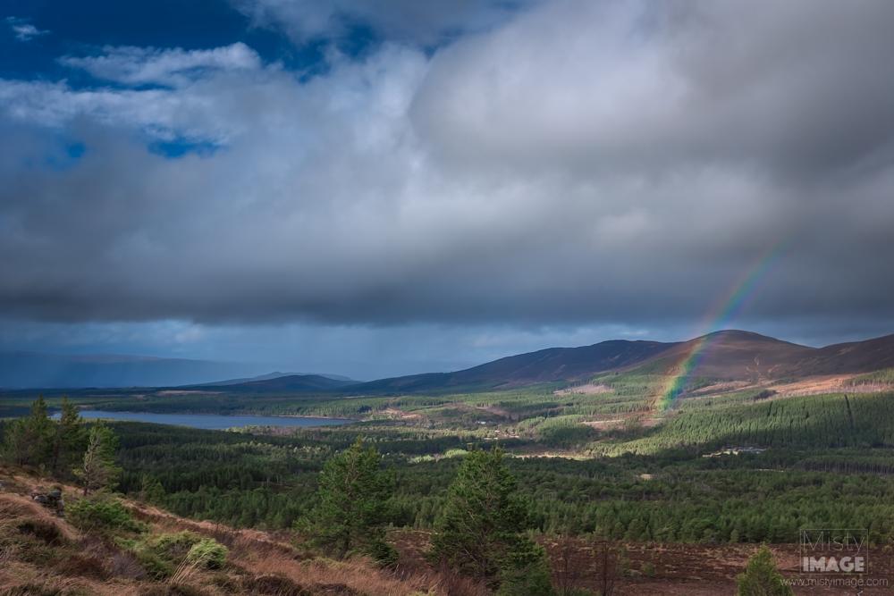 Loch Morlich - The View.png