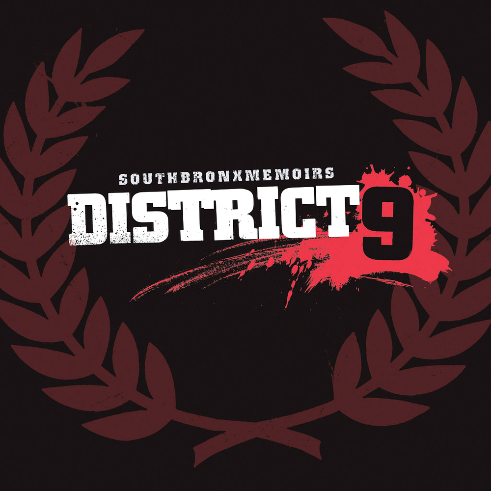District9SouthBronxMemoirsCover.jpg