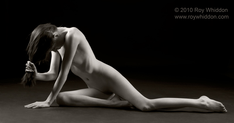 Angular Grace IV