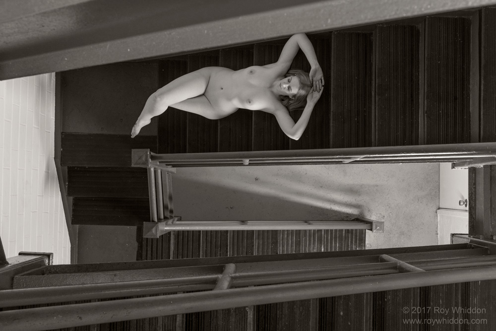 Nude Not Descending a Staircase