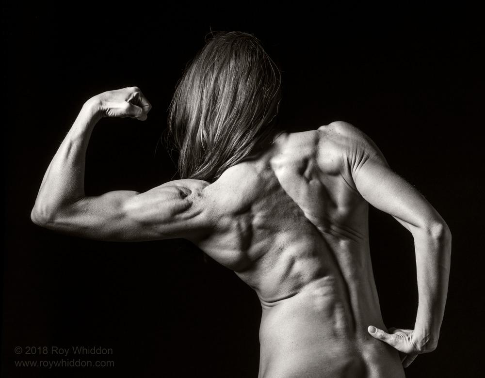 Body Builder I
