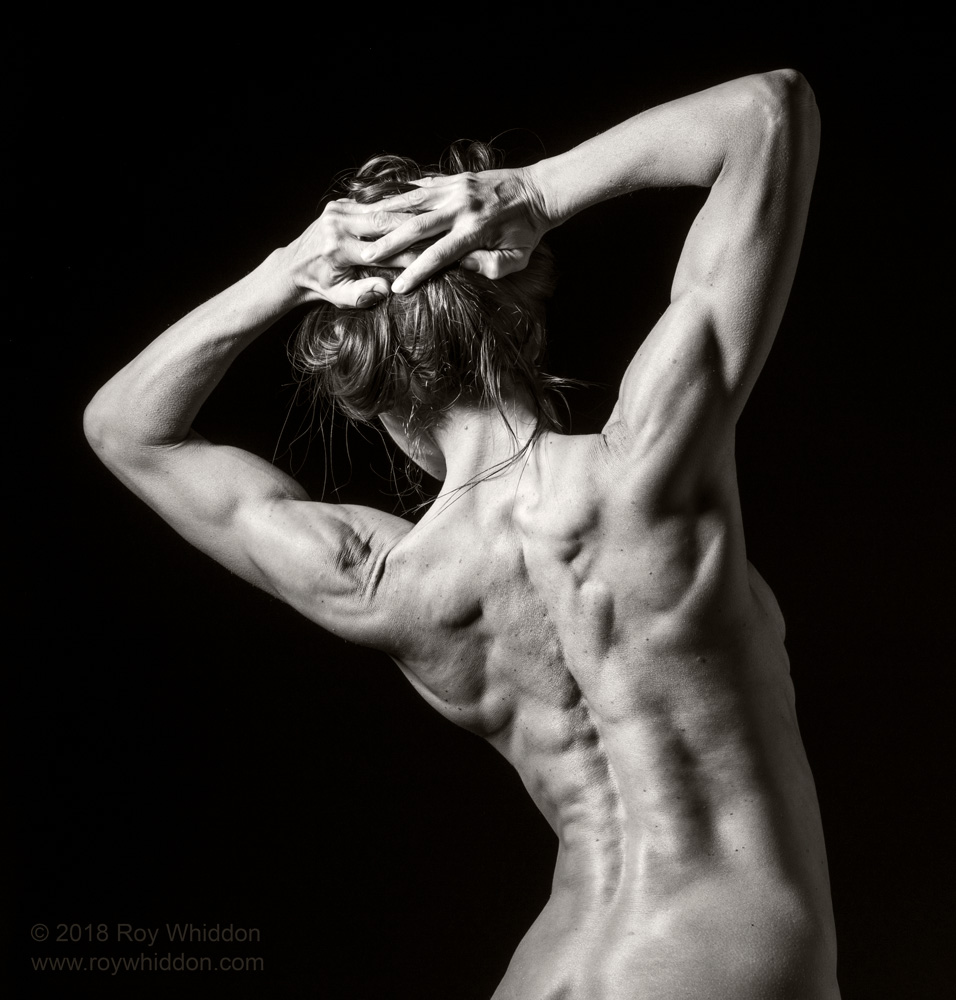 Body Builder II