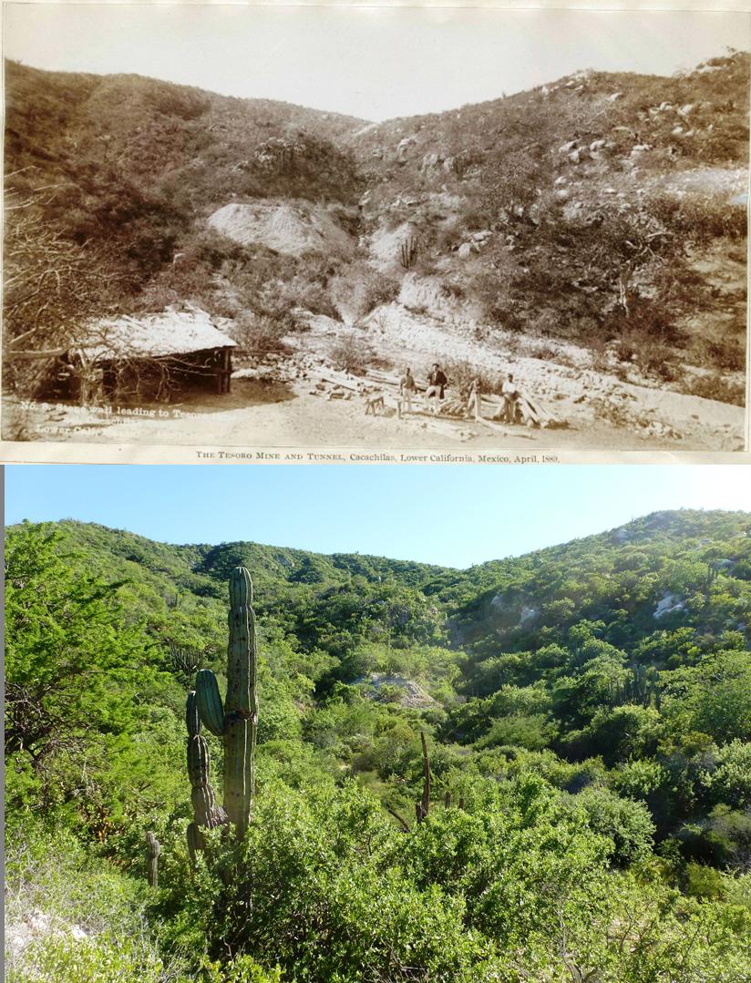 La comparación del sitio de la mina de Cacachilas, en la época minera y en la actualidad.