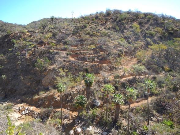 mountain-biking-trail-construction-imba-la-paz