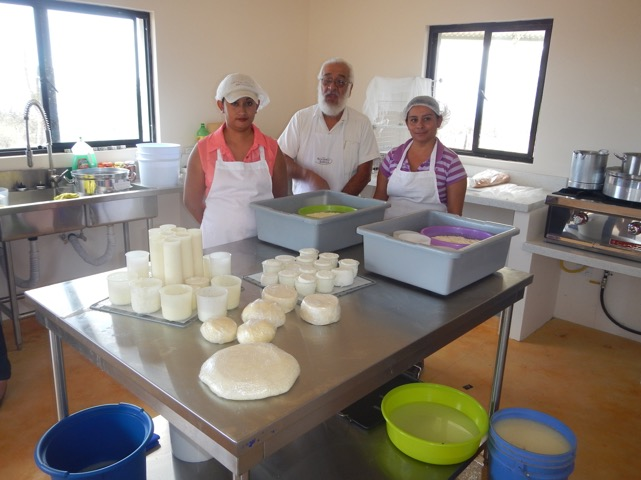 workshop-cheese-making-rancho-cacachilas-bcs