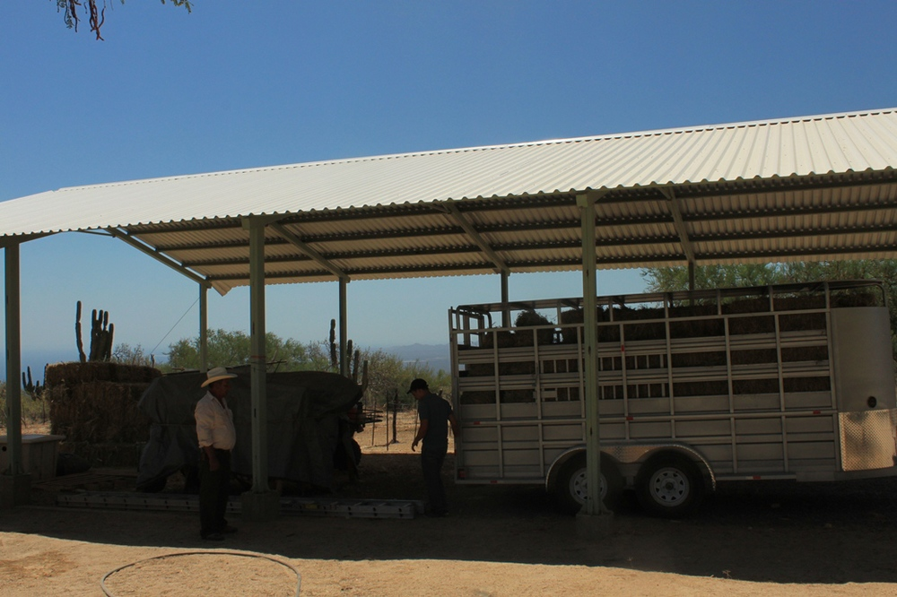 granero-rancho-holistico-dos-hermanos-sierra-cacachilas-la-paz-bcs.jpg
