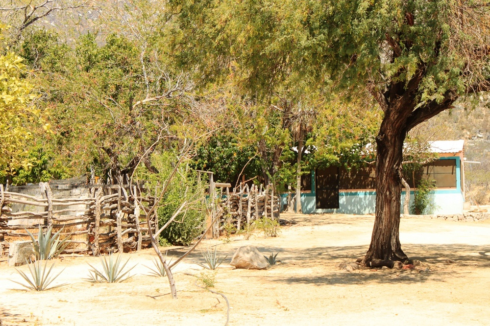 holistic-ranch-corrals-rancho-dos-hermanos-la-paz-mexico.jpg