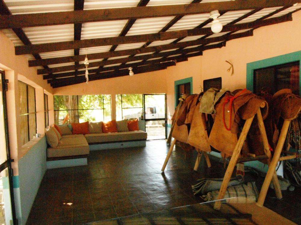 rancho-dos-hermanos-restored-house-mule-cow-saddles-la-paz-mexico.JPG