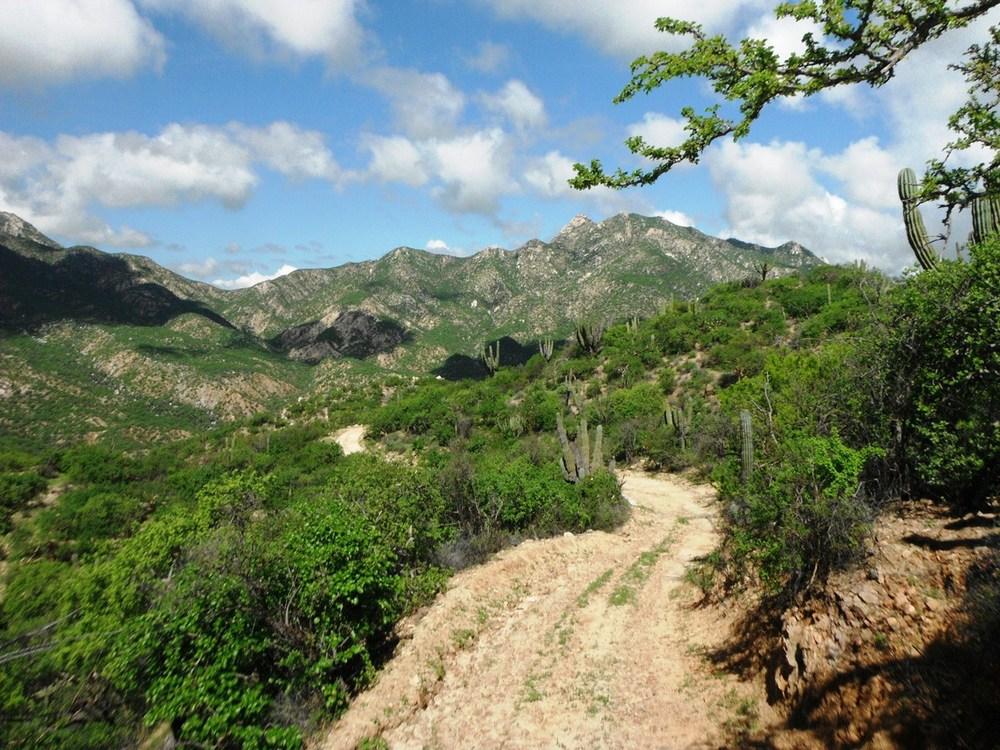 camino-a-los-pisos-sierra-cacachilas-baja-sur-mexico.JPG