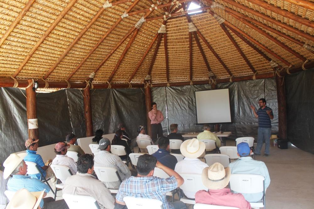 workshop-courses-holistic-ranching-la-paz-baja-california-sur.JPG