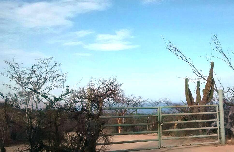 Southern Baja Ranch