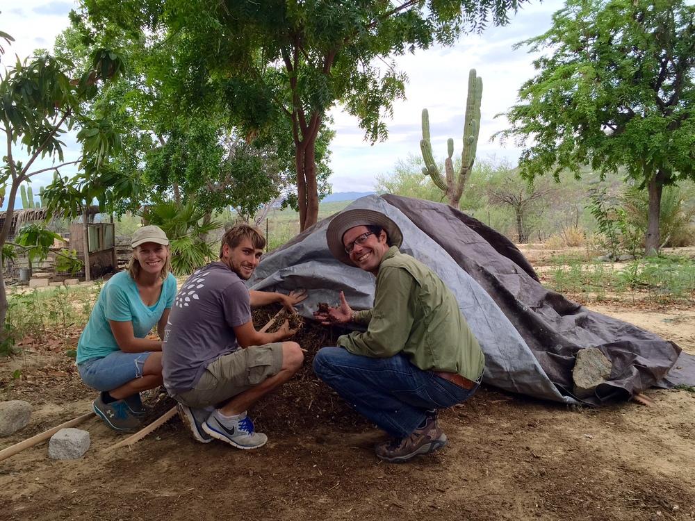 permacultura-composta-mejorar-suelo-rancho-la-paz-baja-california-sur