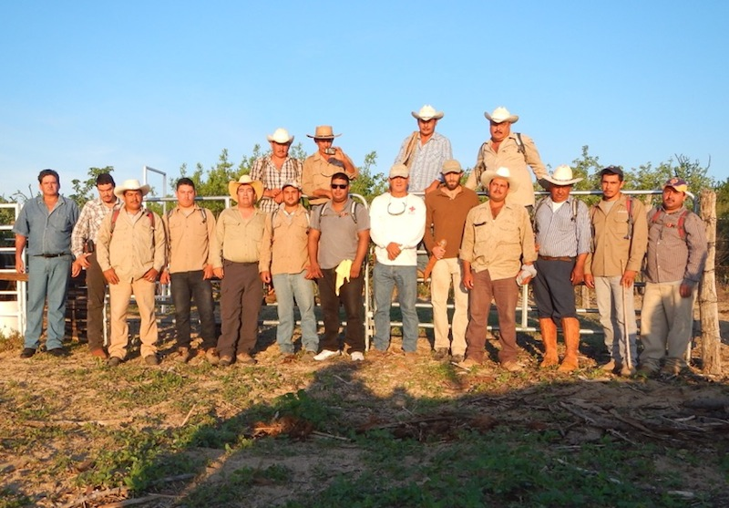 mexico-cattle-management-training