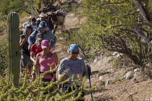 hiking-trails-baja-mexico.jpg
