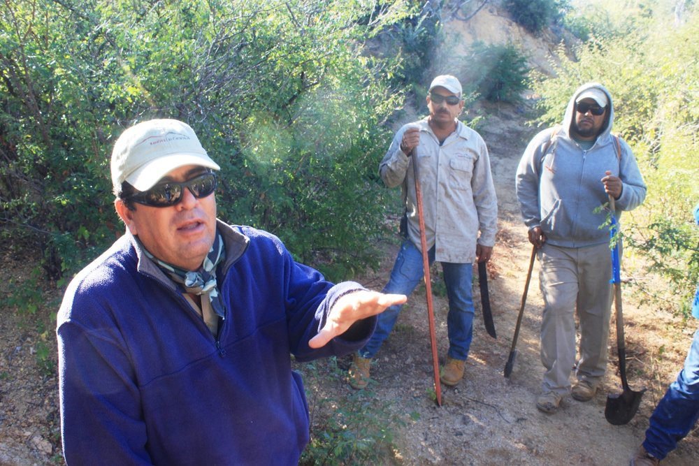 trail-design-sierra-cacachilas.JPG